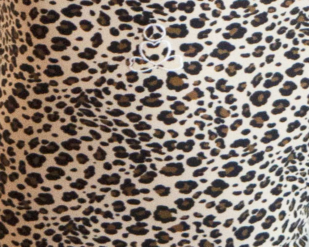 coffee-leopard